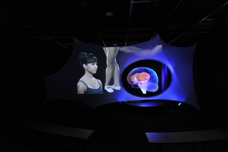 02. Brain theater-DF