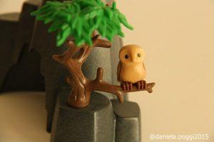 casa_albero4