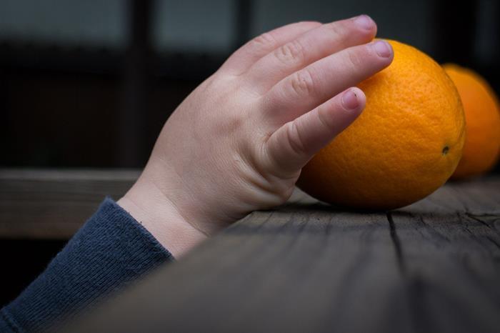alimenti che aiutano lo sviluppo del cervello dei bambini