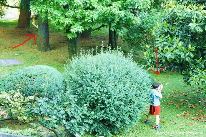 Favorito Nerf ha riportato i bambini in cortile - Scuolainsoffitta AT15