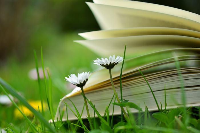 10 libri da leggere quest 39 estate for Libri da leggere