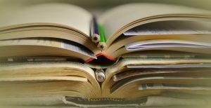 vendere libri scolastici online su Libraccio.it