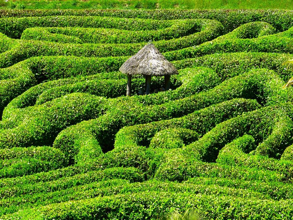 Labirinti vegetali in Italia