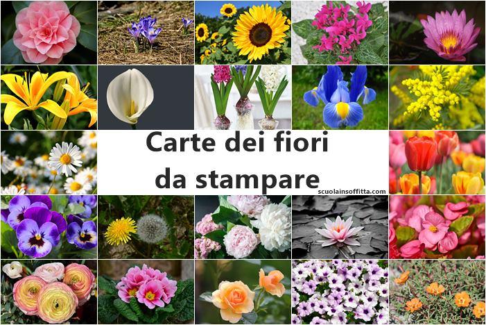 Carte dei fiori da stampare