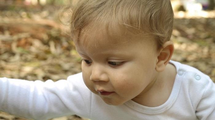 Attività Montessori per bambini piccoli